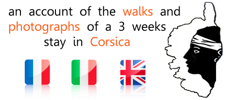 lots of information for organizing your holidays in Corsica